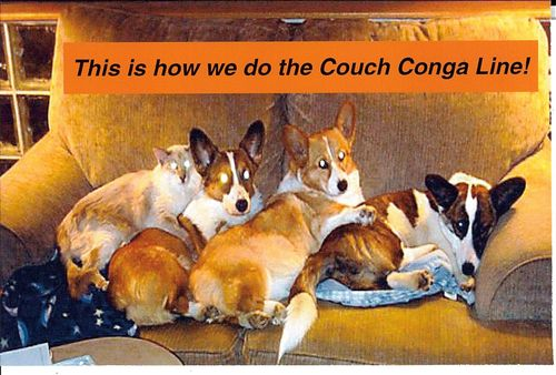 Couch conga