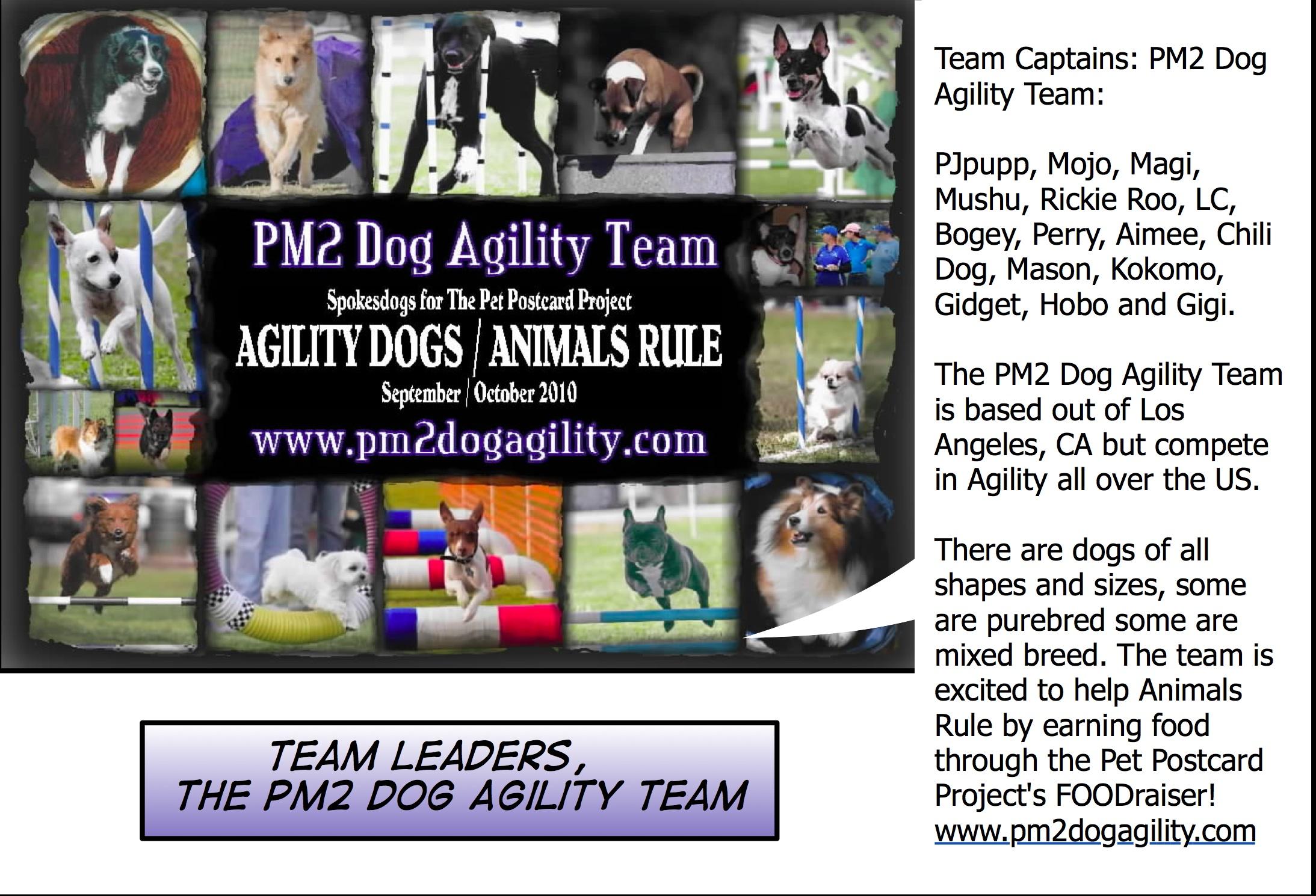 www.PM2dogagility.com