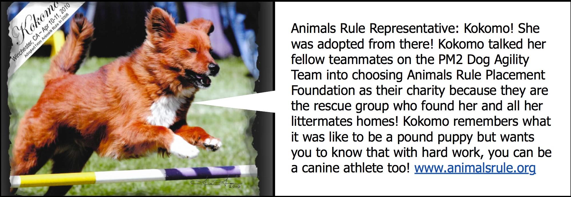 www.animalsrule.org