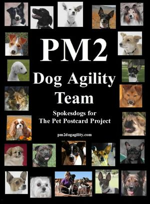 Improved pm2