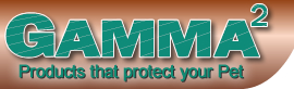 GGamma2-logo