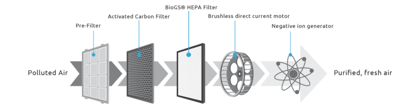 Biogs2_filtrationstage